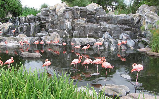 Parque Temaiken